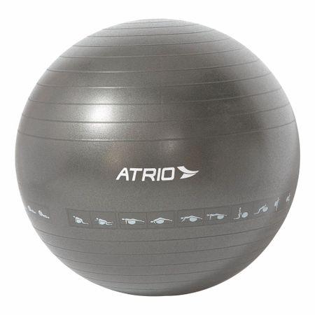 Bola de Ginástica Premium 75CM Diagrama de Exercício Material PVC Cinza Atrio -...